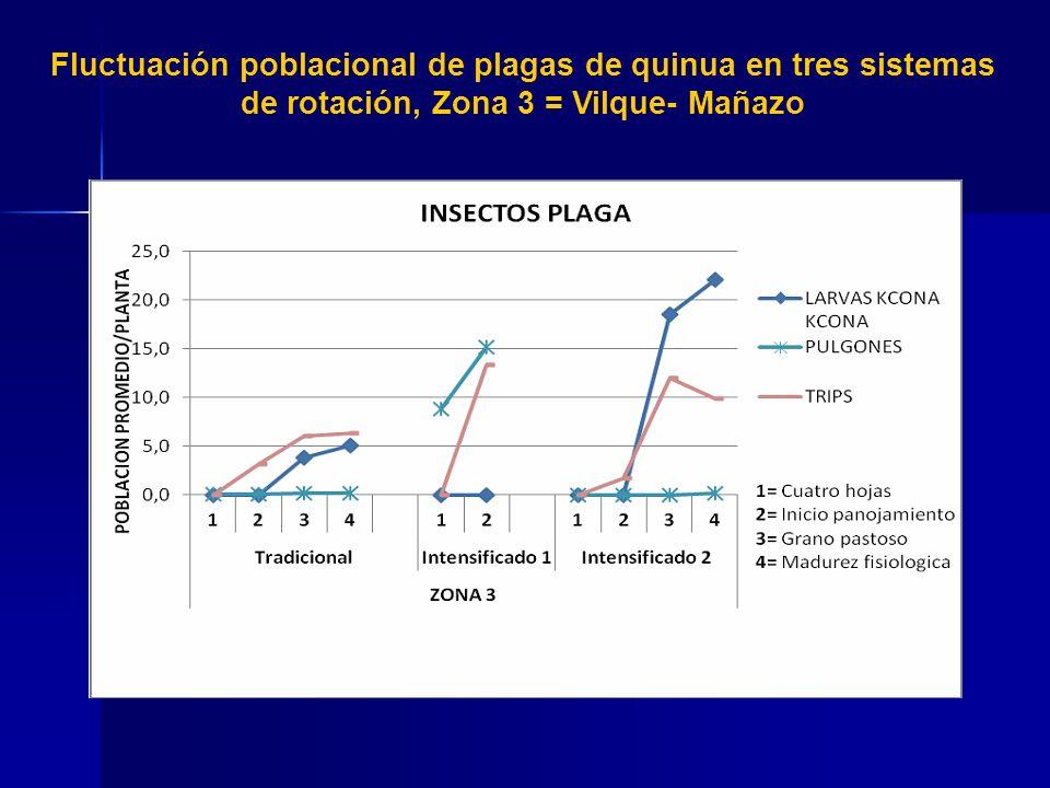 En las tres zonas evaluadas las mayores poblaciones corresponden a Eurysaca quinoae Povolny Kcona kcona considerada como plaga clave, directa.