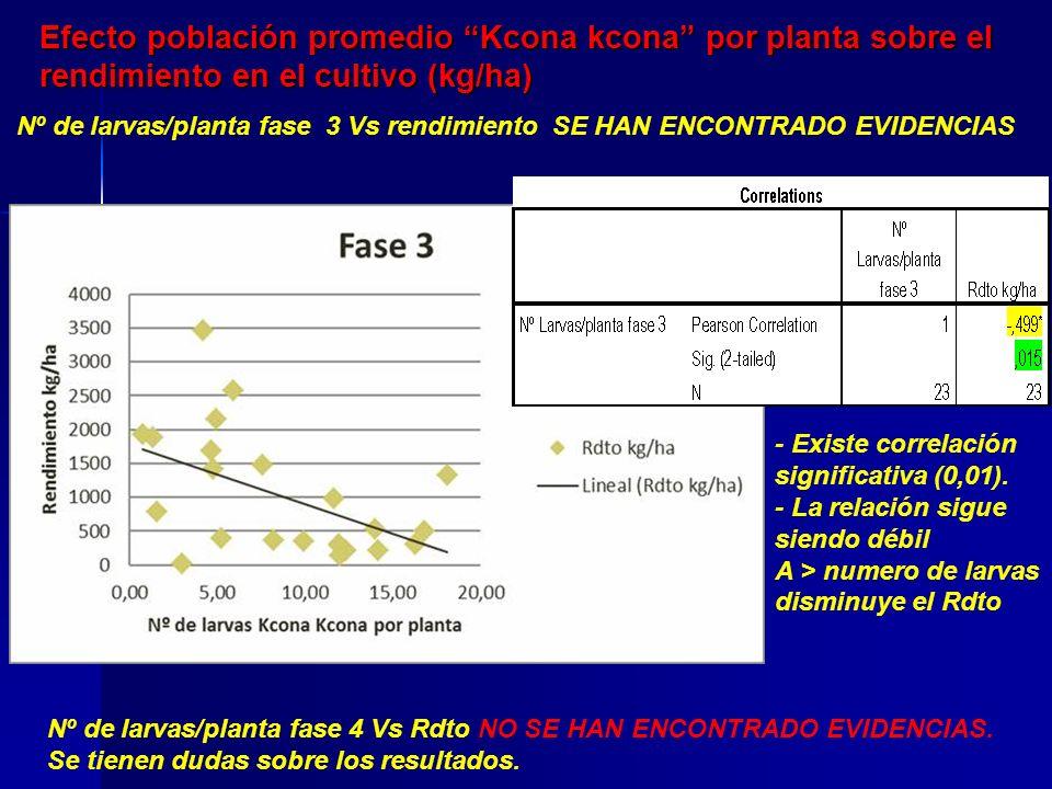 Perdidas económicas Calculado tomando como referencia el máximo rendimiento (kg/ha) obtenido en la parcela, comparado con la escala de evaluación de daños por larvas de Kcona Kcona) Sistema de rotaciónProm.
