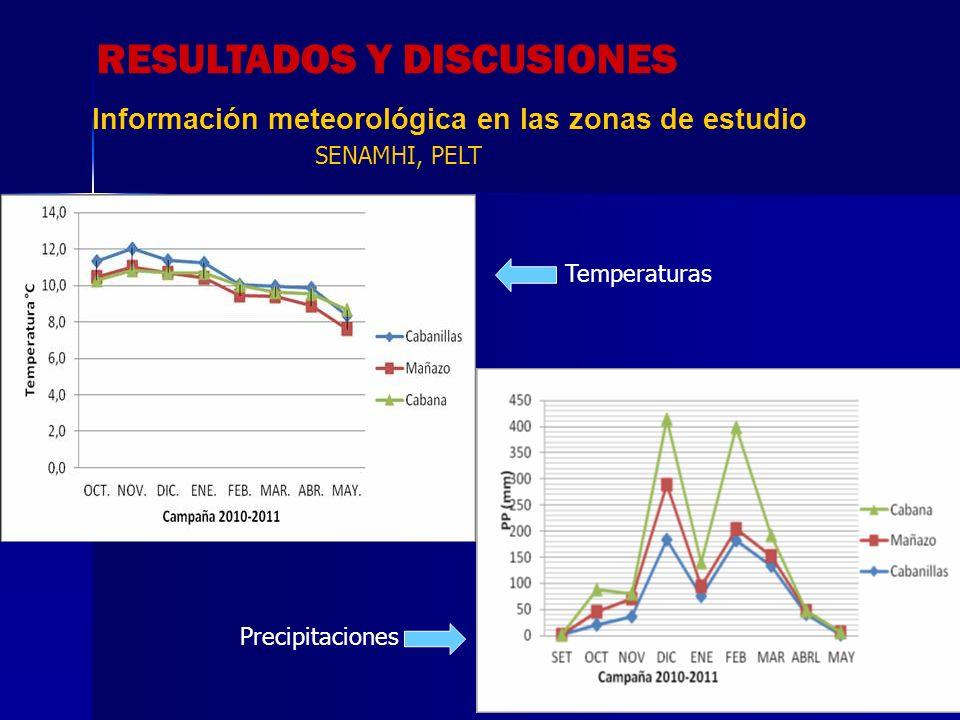 Fluctuación poblacional de plagas de quinua en tres sistemas de rotación, Zona 1 = Cabana