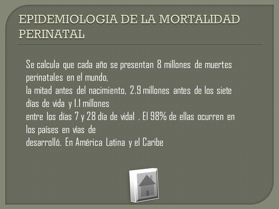 Se calcula que cada año se presentan 8 millones de muertes perinatales en el mundo, la mitad antes del nacimiento, 2.9 millones antes de los siete día