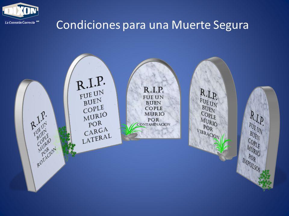 MR La Conexión Correcta Condiciones para una Muerte Segura