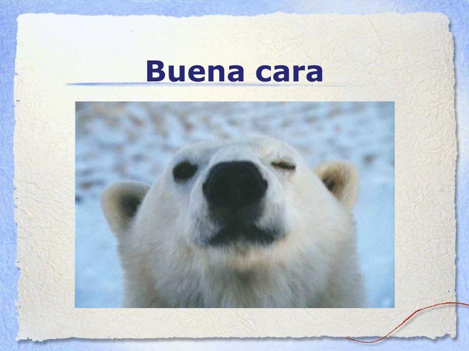 Pero mas que nada... Te deseo muchos abrazos de oso