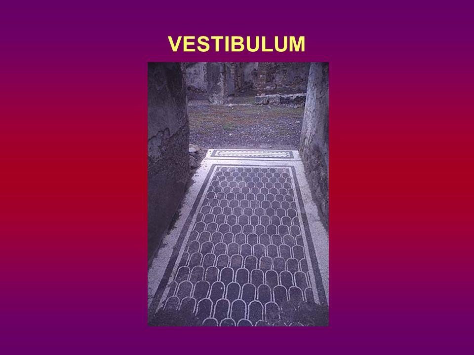 VESTIBULUM
