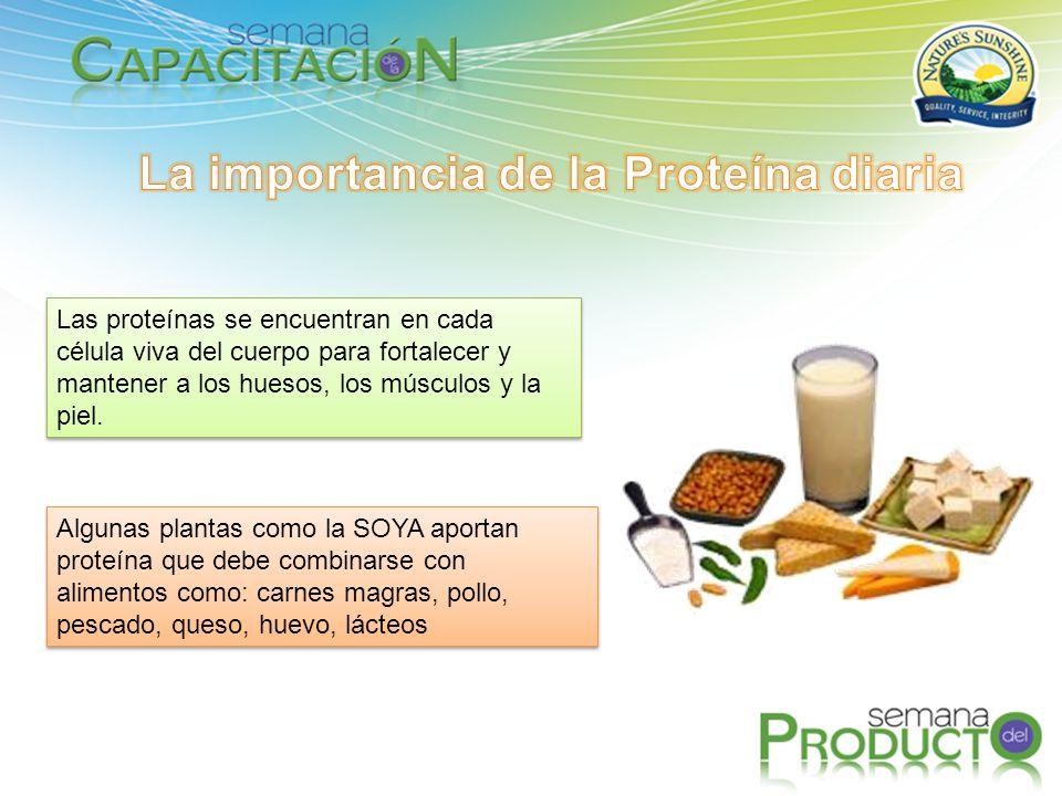 Las proteínas se encuentran en cada célula viva del cuerpo para fortalecer y mantener a los huesos, los músculos y la piel.
