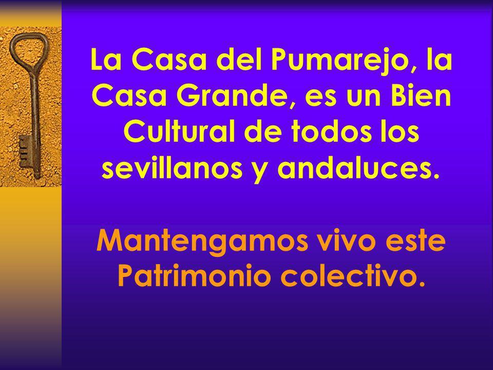 La Casa del Pumarejo, la Casa Grande, es un Bien Cultural de todos los sevillanos y andaluces. Mantengamos vivo este Patrimonio colectivo.