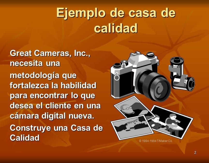 2 Great Cameras, Inc., necesita una metodología que fortalezca la habilidad para encontrar lo que desea el cliente en una cámara digital nueva. Constr