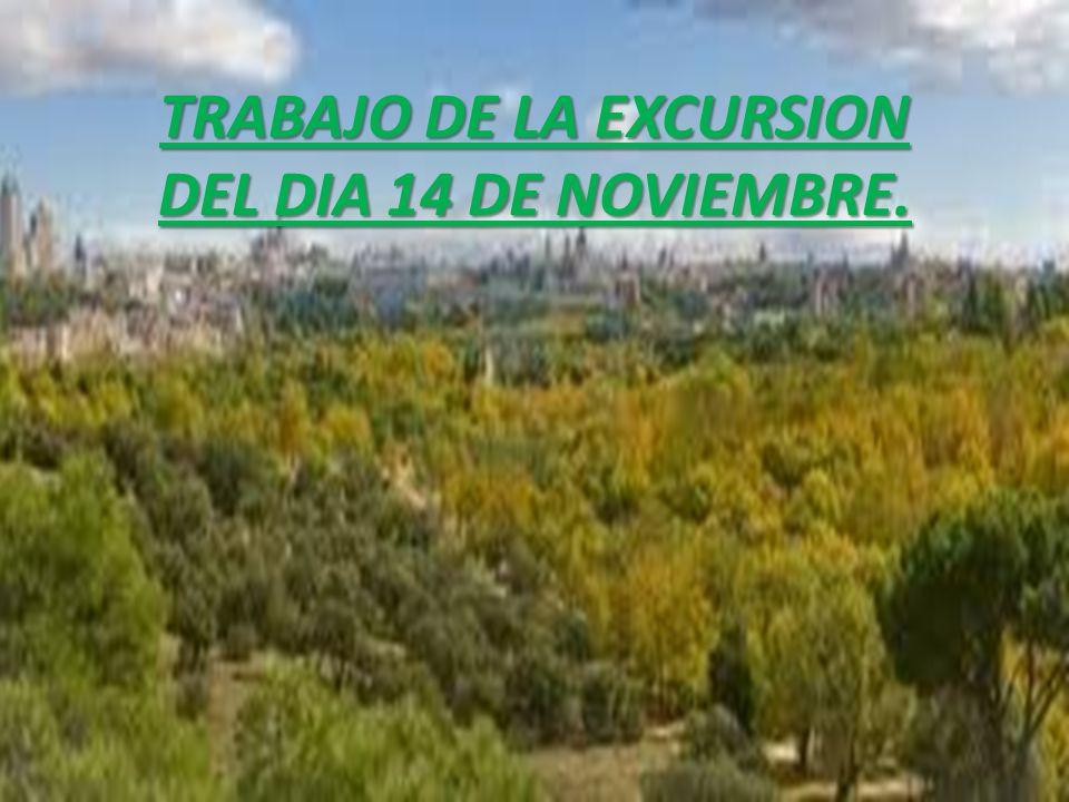 TRABAJO DE LA EXCURSION DEL DIA 14 DE NOVIEMBRE.