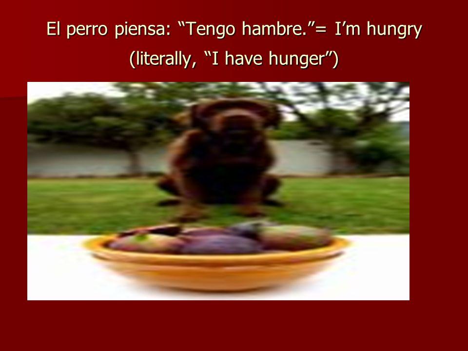 El perro piensa: Tengo hambre.= Im hungry (literally, I have hunger)