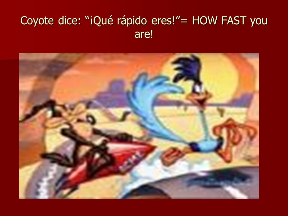 Coyote dice: ¡Qué rápido eres!= HOW FAST you are!