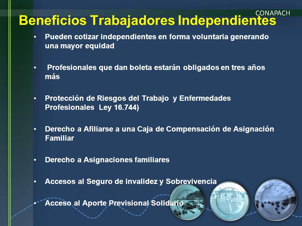 Beneficios Trabajadores Independientes Pueden cotizar independientes en forma voluntaria generando una mayor equidad Profesionales que dan boleta esta