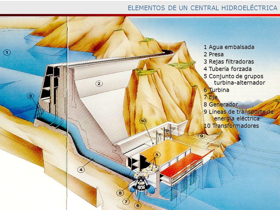 ELEMENTOS DE UN CENTRAL HIDROELÉCTRICA 1 Agua embalsada 2 Presa 3 Rejas filtradoras 4 Tubería forzada 5 Conjunto de grupos turbina-alternador 6 Turbin
