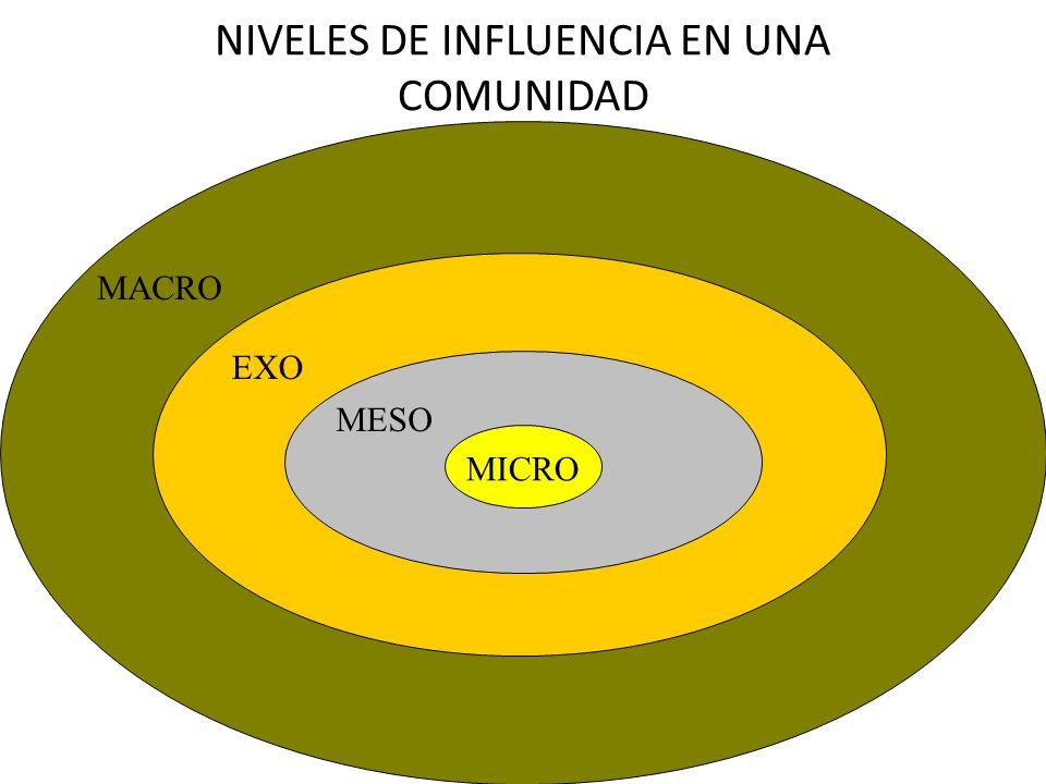NIVELES DE INFLUENCIA EN UNA COMUNIDAD MICRO MESO EXO MACRO
