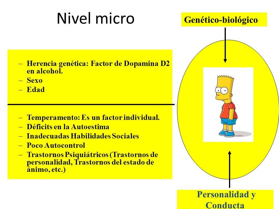 Nivel micro Genético-biológico –Herencia genética: Factor de Dopamina D2 en alcohol. –Sexo –Edad –Temperamento: Es un factor individual. –Déficits en