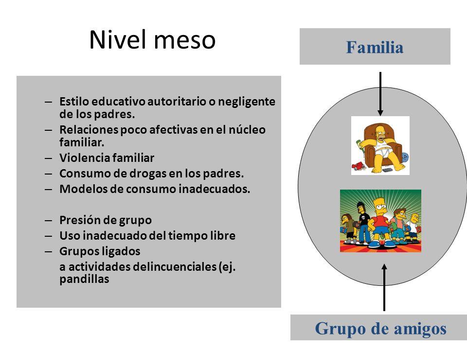 Nivel meso – Estilo educativo autoritario o negligente de los padres. – Relaciones poco afectivas en el núcleo familiar. – Violencia familiar – Consum