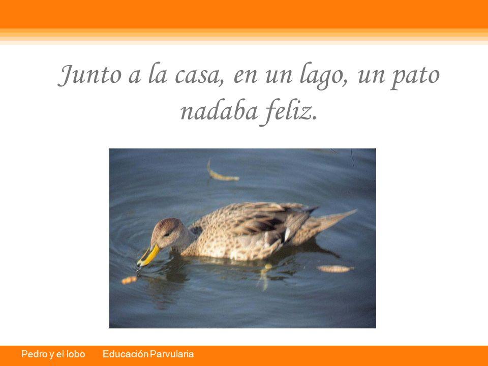Pedro y el lobo Educación Parvularia Junto a la casa, en un lago, un pato nadaba feliz.