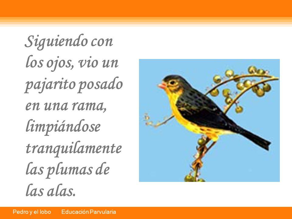 Pedro y el lobo Educación Parvularia Siguiendo con los ojos, vio un pajarito posado en una rama, limpiándose tranquilamente las plumas de las alas.