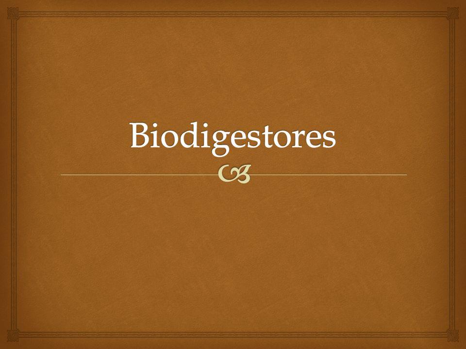 Al tener una mezcla de estiércol con residuos orgánicos se produce abono y gases (CO2, nitritos, nitratos) Si no se tiene el suficiente aire por procesos anaeróbicos se puede producir amoníaco, nitrógeno, metano y dióxido de carbono.