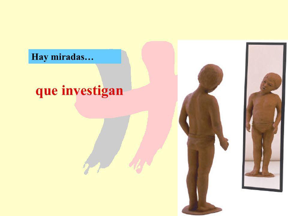 107 que investigan Hay miradas…