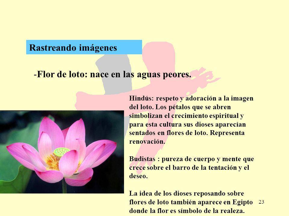 23 -Flor de loto: nace en las aguas peores. Rastreando imágenes Hindús: respeto y adoración a la imagen del loto. Los pétalos que se abren simbolizan