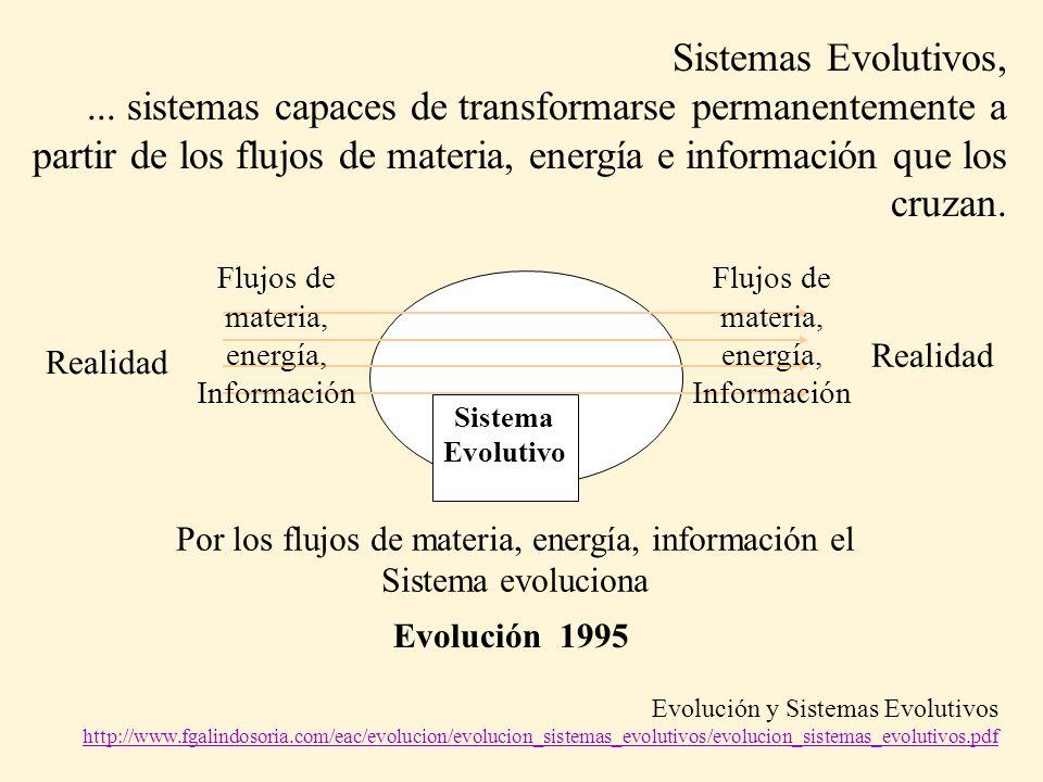 Sistemas Evolutivos,...
