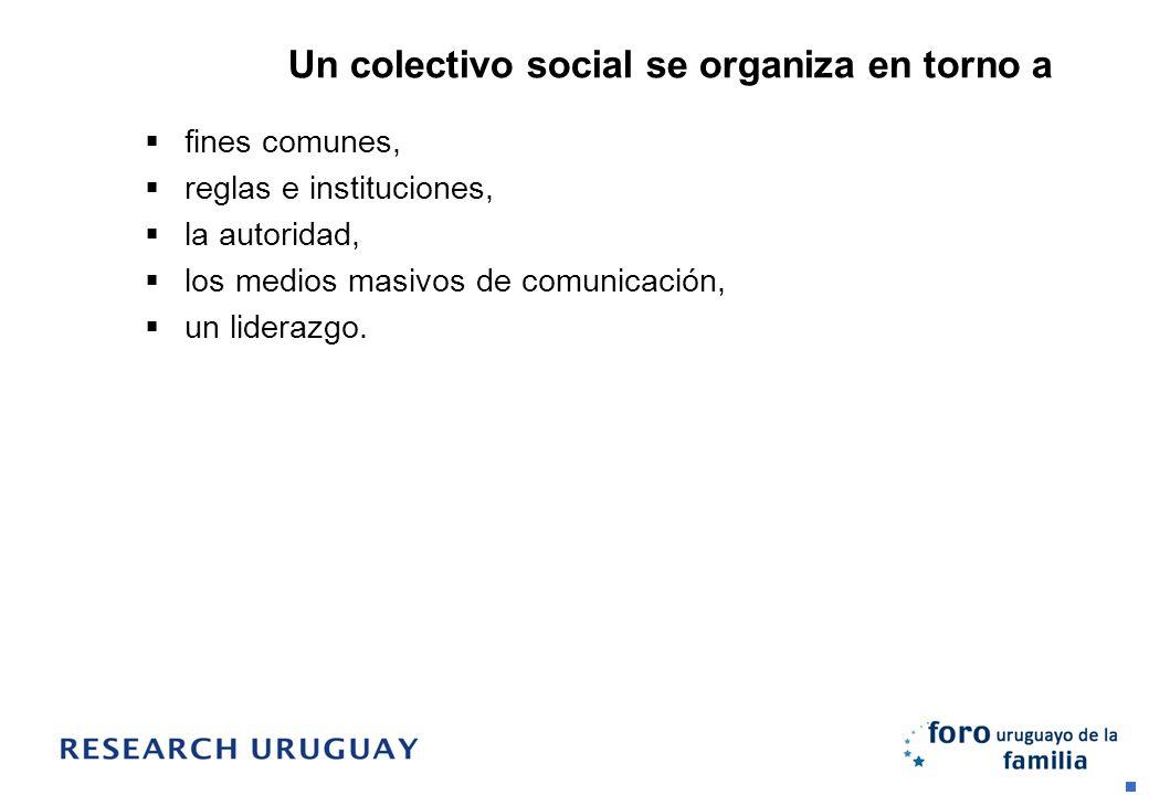 Un colectivo social se organiza en torno a fines comunes, reglas e instituciones, la autoridad, los medios masivos de comunicación, un liderazgo.