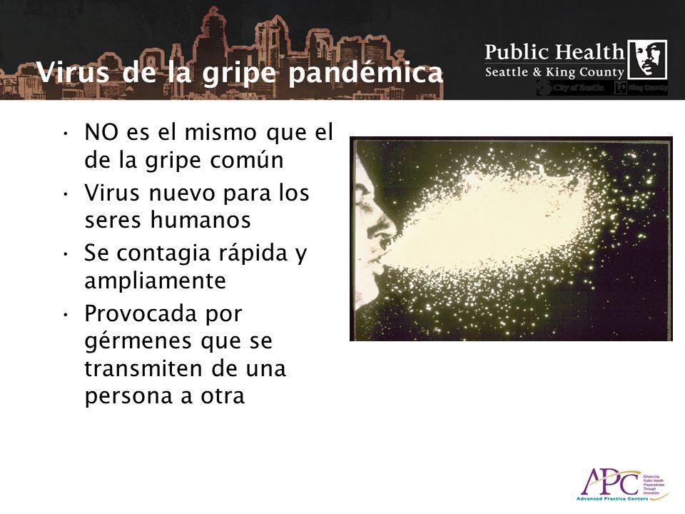 NO es el mismo que el de la gripe común Virus nuevo para los seres humanos Se contagia rápida y ampliamente Provocada por gérmenes que se transmiten de una persona a otra Virus de la gripe pandémica