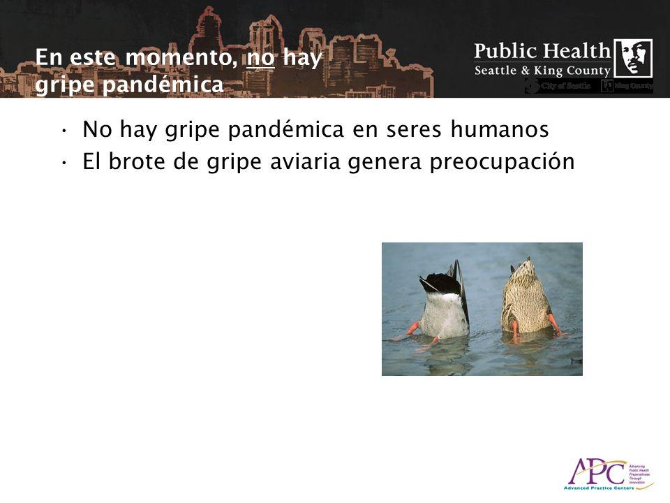 En este momento, no hay gripe pandémica No hay gripe pandémica en seres humanos El brote de gripe aviaria genera preocupación