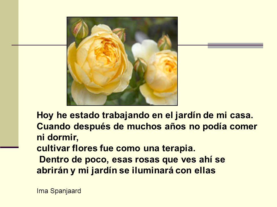 Ima Spanjaard Hoy he estado trabajando en el jardín de mi casa. Cuando después de muchos años no podía comer ni dormir, cultivar flores fue como una t