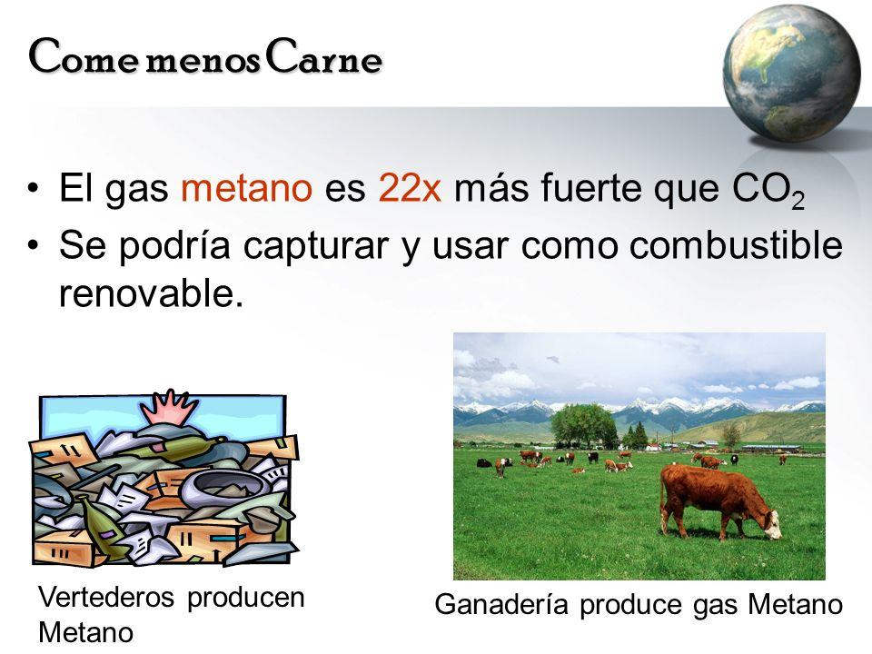 Come menos Carne El gas metano es 22x más fuerte que CO 2 Se podría capturar y usar como combustible renovable. Vertederos producen Metano Ganadería p