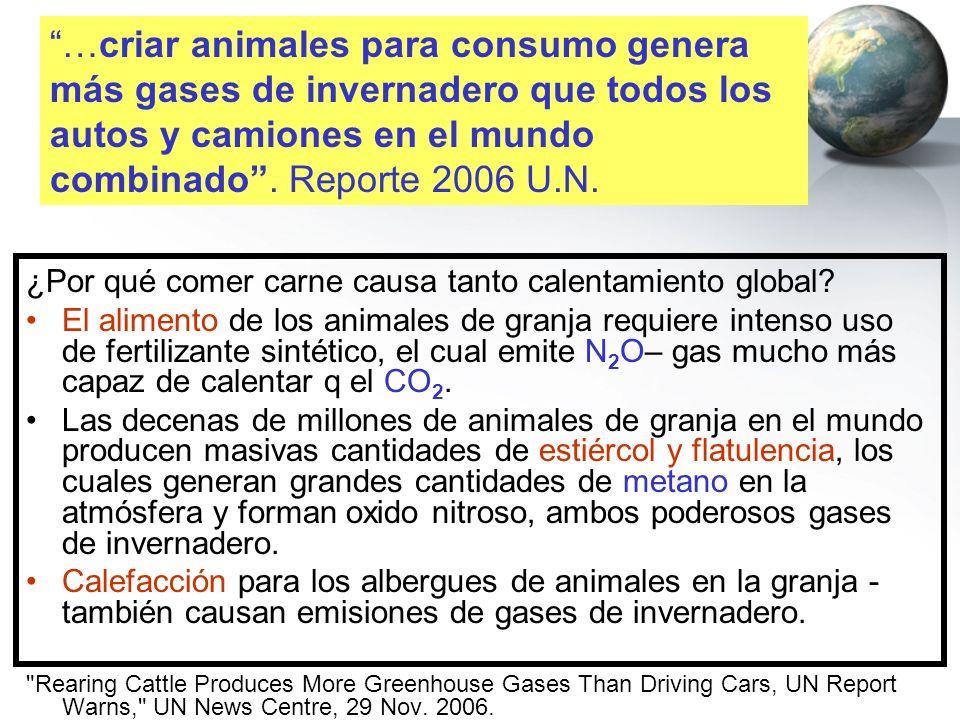 ¿Por qué comer carne causa tanto calentamiento global? El alimento de los animales de granja requiere intenso uso de fertilizante sintético, el cual e