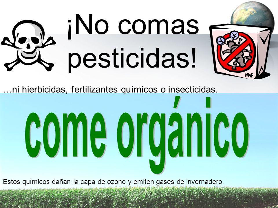 ¡No comas pesticidas! …ni hierbicidas, fertilizantes químicos o insecticidas. Estos químicos dañan la capa de ozono y emiten gases de invernadero.