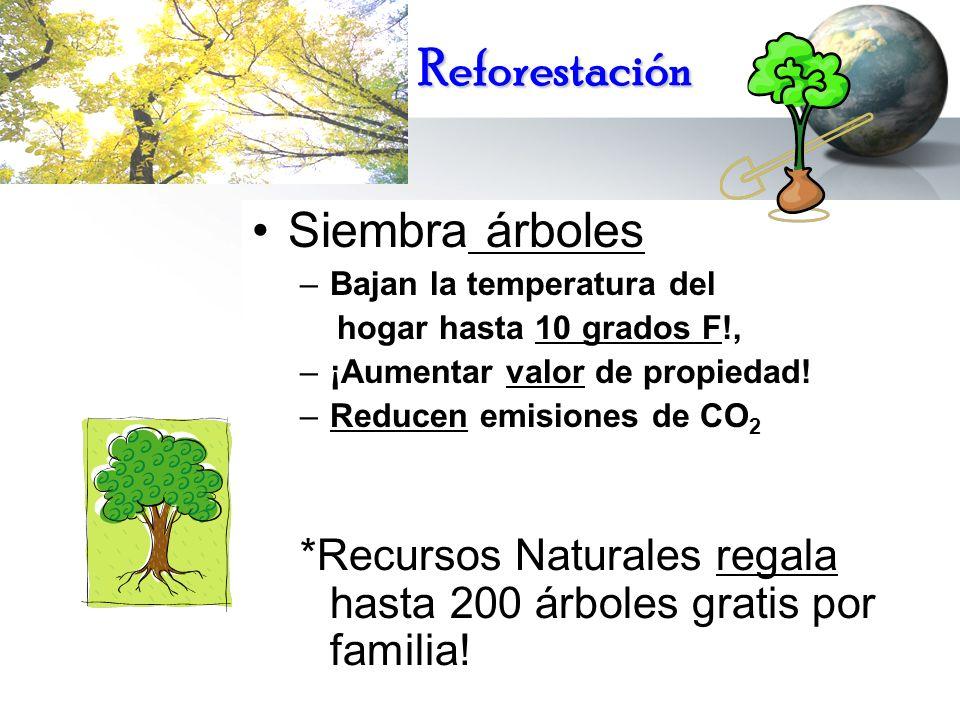 Reforestación Siembra árboles –Bajan la temperatura del hogar hasta 10 grados F!, –¡Aumentar valor de propiedad! –Reducen emisiones de CO 2 *Recursos