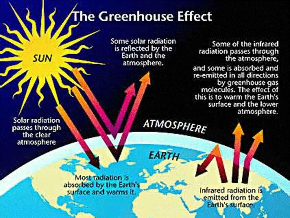Desechable Dile NO a lo: Aumenta los desperdicios en el vertedero, por lo tanto a más gas metano.