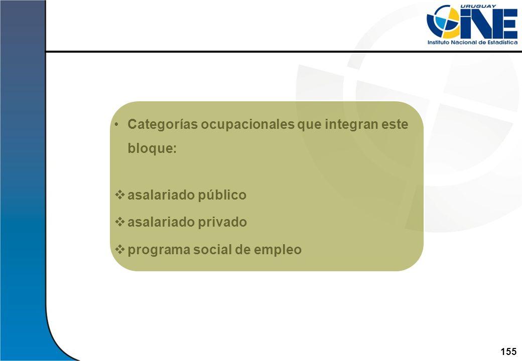 155Instituto Nacional de Estadística Categorías ocupacionales que integran este bloque: asalariado público asalariado privado programa social de emple