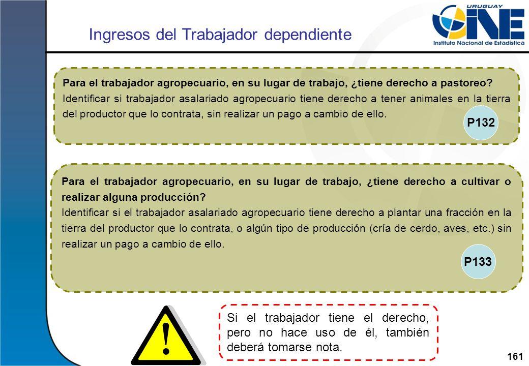 161Instituto Nacional de Estadística Para el trabajador agropecuario, en su lugar de trabajo, ¿tiene derecho a cultivar o realizar alguna producción?