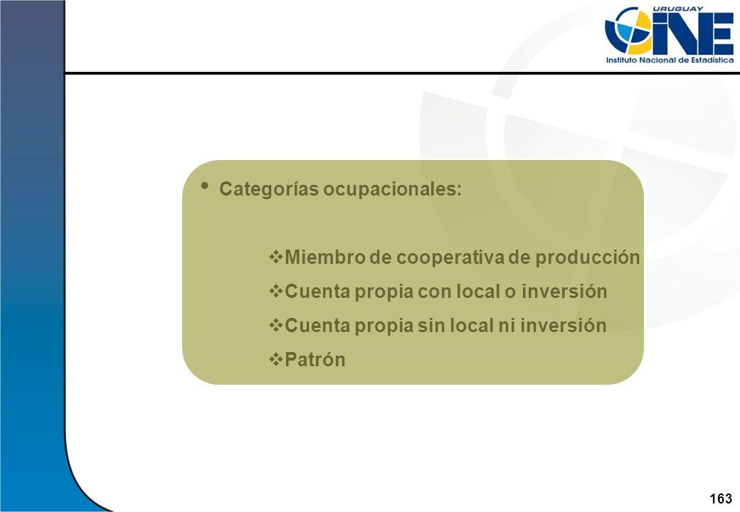 163 Categorías ocupacionales: Miembro de cooperativa de producción Cuenta propia con local o inversión Cuenta propia sin local ni inversión Patrón Ins