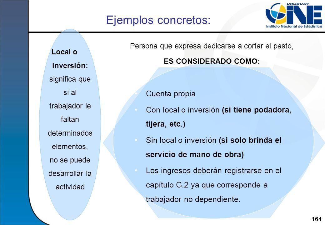 164Instituto Nacional de Estadística Ejemplos concretos: Cuenta propia Con local o inversión (si tiene podadora, tijera, etc.) Sin local o inversión (