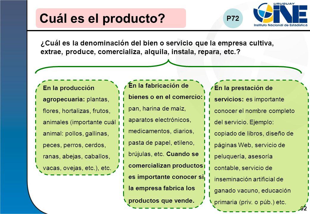 92Instituto Nacional de Estadística Cuál es el producto? ¿Cuál es la denominación del bien o servicio que la empresa cultiva, extrae, produce, comerci