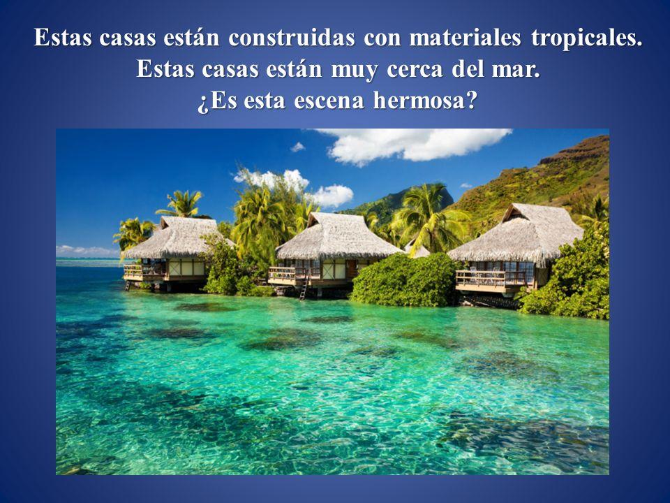Estas casas están construidas con materiales tropicales.