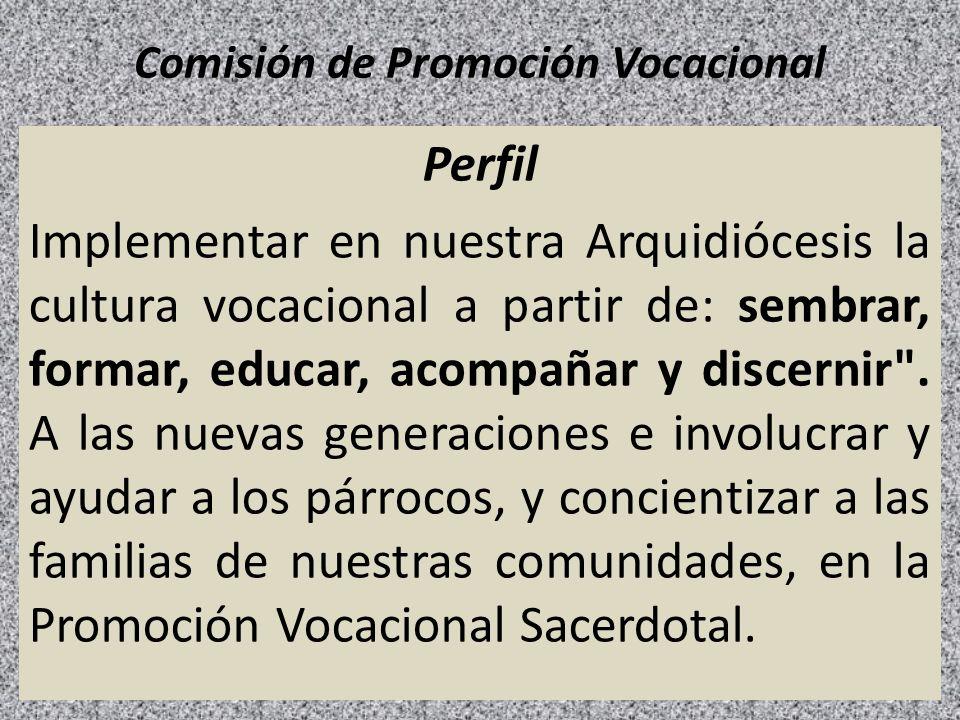 Comisión de Promoción Vocacional Perfil Implementar en nuestra Arquidiócesis la cultura vocacional a partir de: sembrar, formar, educar, acompañar y d
