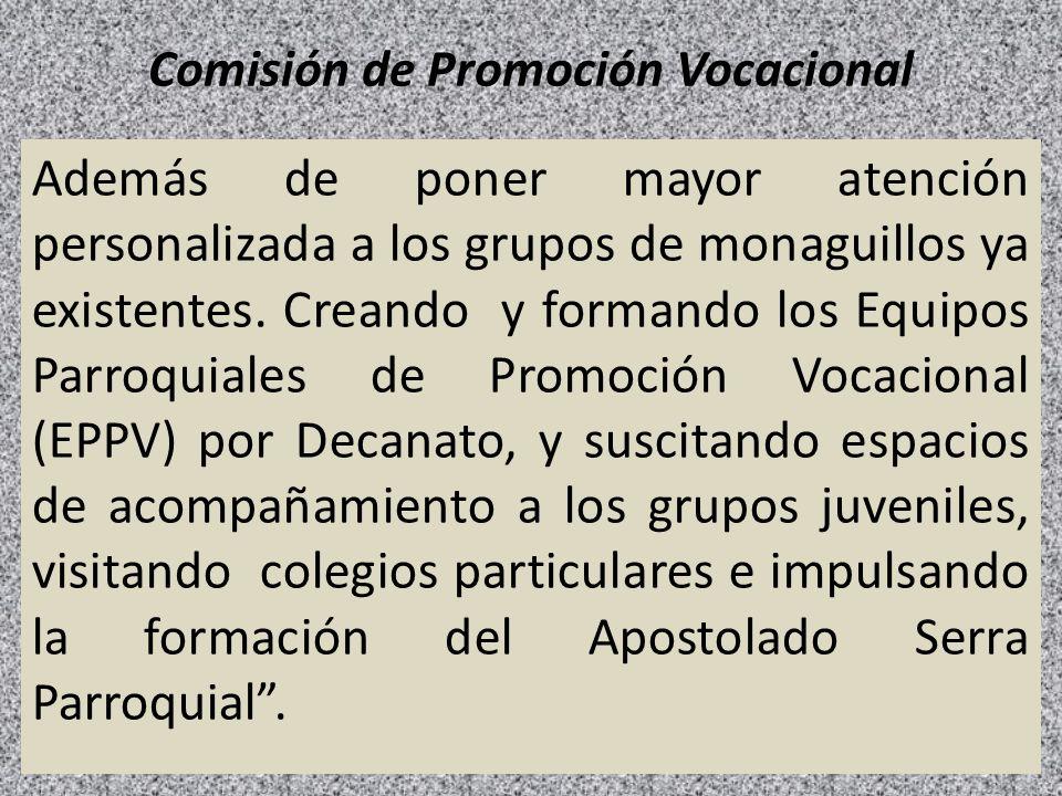 Comisión de Promoción Vocacional Además de poner mayor atención personalizada a los grupos de monaguillos ya existentes. Creando y formando los Equipo