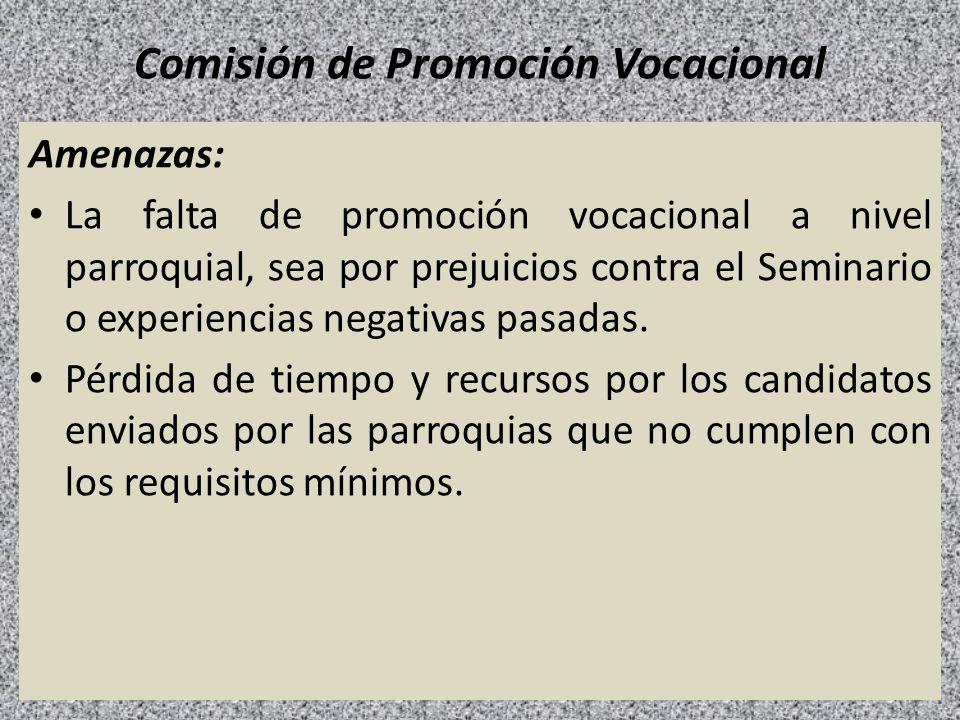 Comisión de Promoción Vocacional Amenazas: La falta de promoción vocacional a nivel parroquial, sea por prejuicios contra el Seminario o experiencias