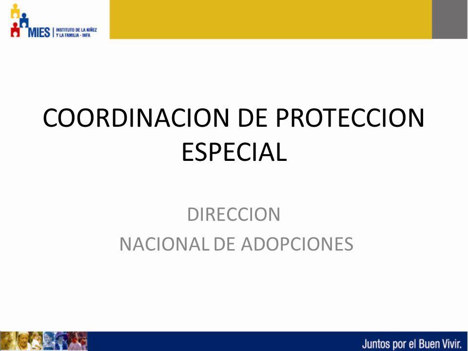 COORDINACION DE PROTECCION ESPECIAL DIRECCION NACIONAL DE ADOPCIONES