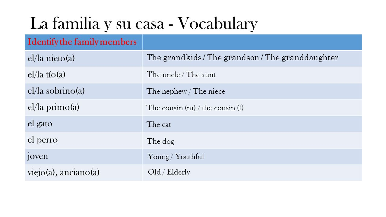 La familia y su casa - Vocabulary Identify the family members el/la nieto(a) el/la tío(a) el/la sobrino(a) el/la primo(a) el gato el perro joven viejo(a), anciano(a) The grandkids / The grandson / The granddaughter Th e uncle / The aunt The nephew / The niece The cousin (m) / the cousin (f) The cat The dog Young / Youthful Old / Elderly