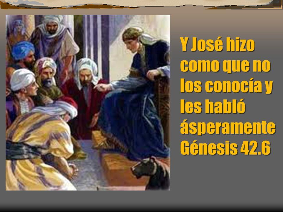 Y José era el señor de la tierra quien le vendía el pueblo de la tierra y sus hermanos llegaron y se inclinaron a él rostro en tierra.