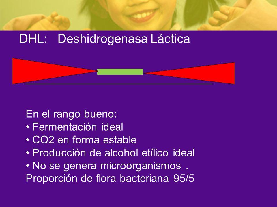 DHL: Deshidrogenasa Láctica En el rango bueno: Fermentación ideal CO2 en forma estable Producción de alcohol etílico ideal No se genera microorganismo