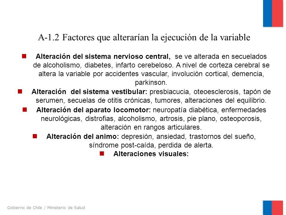 Gobierno de Chile / Ministerio de Salud A-1.2 Factores que alterarían la ejecución de la variable Alteración del sistema nervioso central, se ve alter