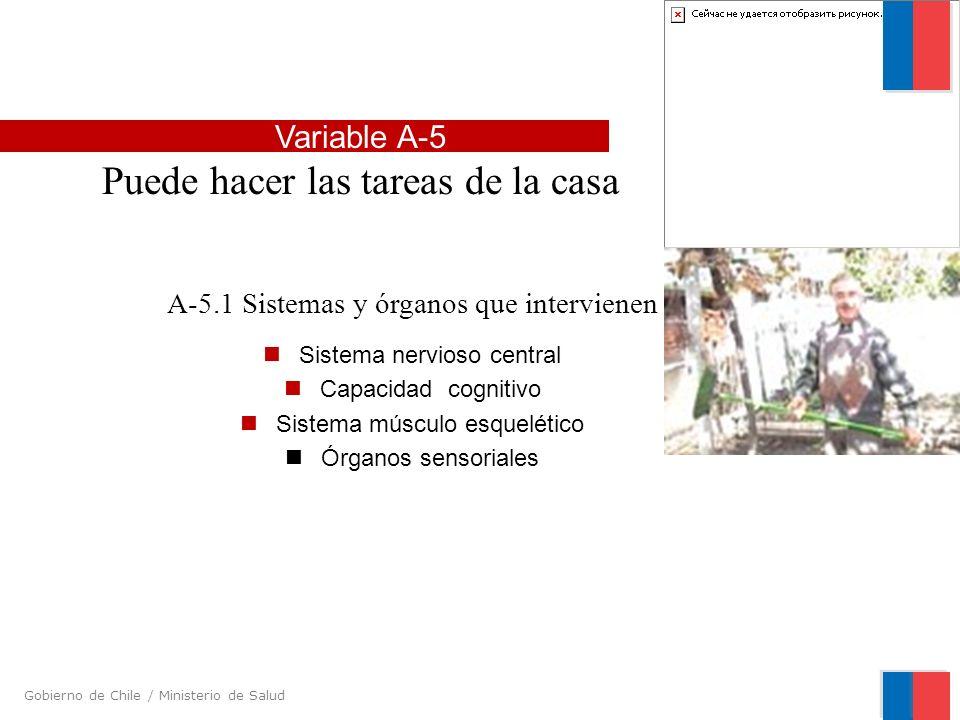 Gobierno de Chile / Ministerio de Salud A-5.1 Sistemas y órganos que intervienen Sistema nervioso central Capacidad cognitivo Sistema músculo esquelét