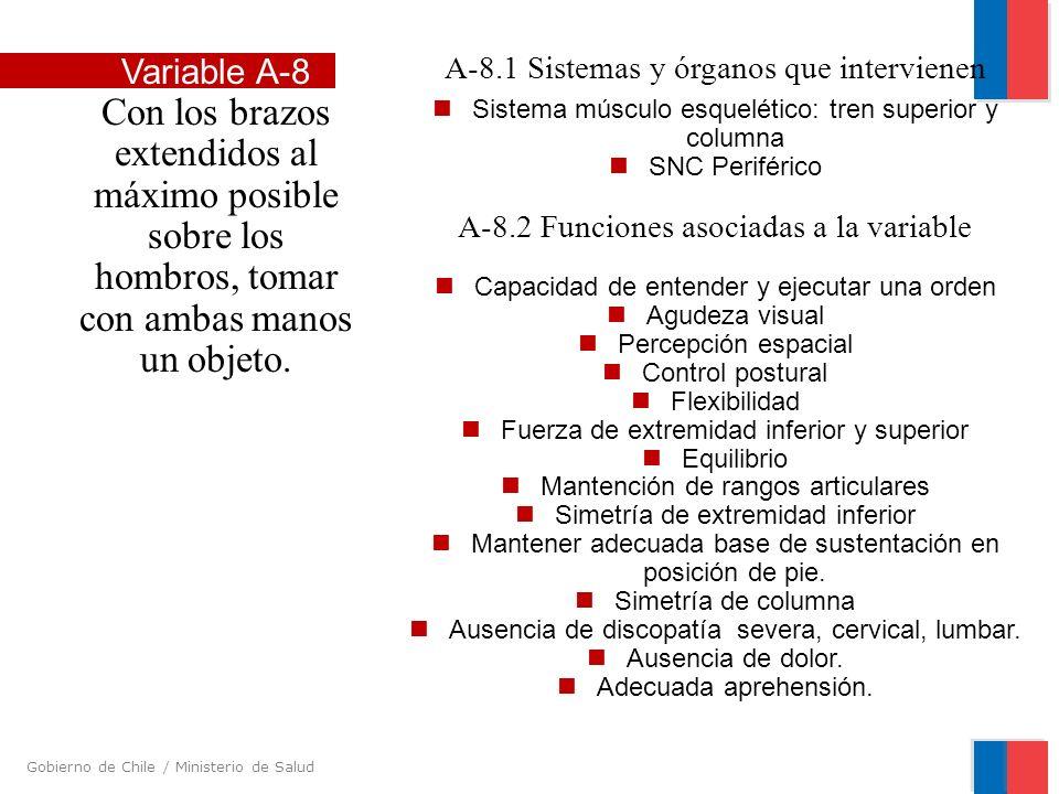 Gobierno de Chile / Ministerio de Salud A-8.1 Sistemas y órganos que intervienen Sistema músculo esquelético: tren superior y columna SNC Periférico A