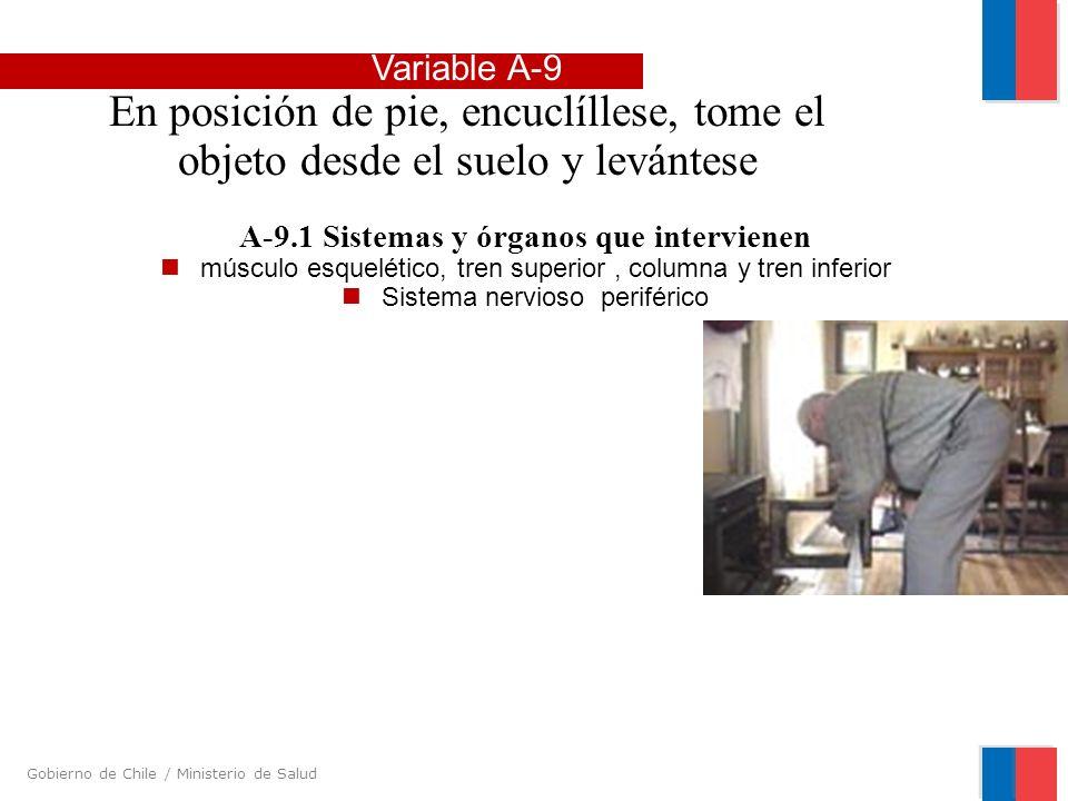 Gobierno de Chile / Ministerio de Salud A-9.1 Sistemas y órganos que intervienen músculo esquelético, tren superior, columna y tren inferior Sistema n